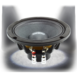 Sundown Audio NeoPro V2